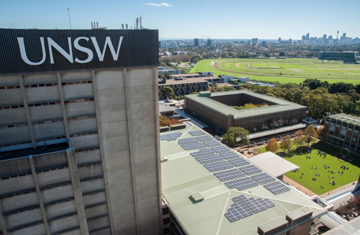 UNSW celebrates progress on World Environment Day
